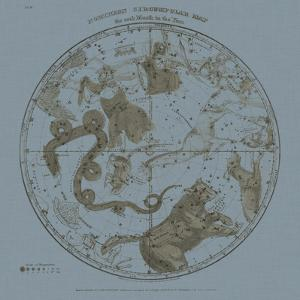 Northern Circumpolar Map by W.G. Evans