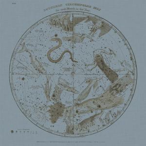 Southern Circumpolar Map by W.G. Evans