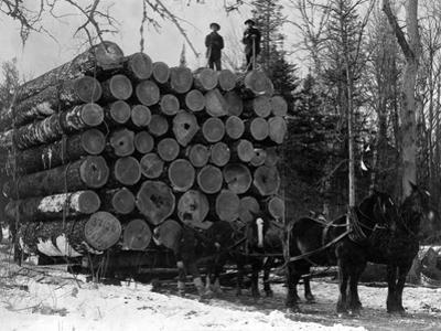 Horses Hauling Huge Load of Logs by W.G. Hopps