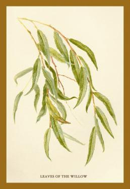 Leaves of the Willow by W.h.j. Boot