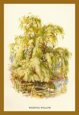 The Weeping Willow by W.h.j. Boot