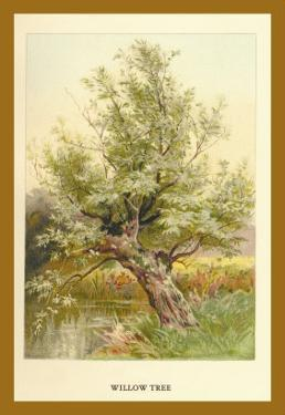Willow Tree by W.h.j. Boot