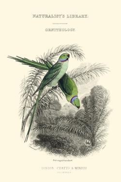 The Naturalist's Library I by W.h. Lizars