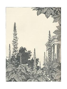 Illustration to a Midsummer Nights Dream, 1914 by W Heath Robinson