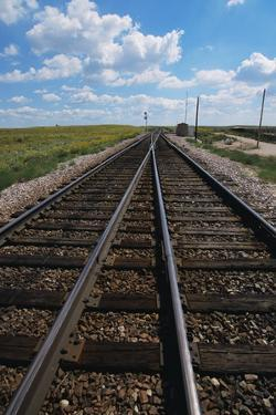 Railroad Tracks by W. Perry Conway
