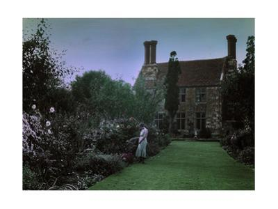 A Woman Admires the Blooms of the Yaverland Manor Gardens