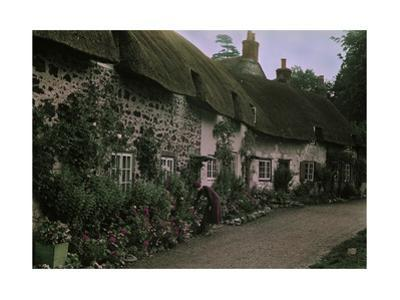 A Woman Tends to Flowers Along the Windows of English Thatched Roofs