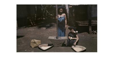 Two Batak Women Stand by a Mortar, Holding a Pestle Used to Make Rice