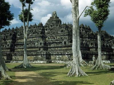 Woman Stands in Shade Beside Tall Trees Near Borobudur Temple