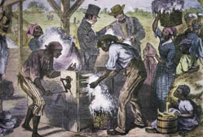 The First Cotton Gin