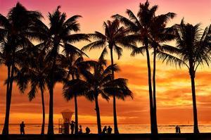 Waikiki Beach, Honolulu, Island of Oahu, Hawaii, USA