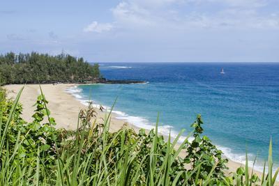 https://imgc.allpostersimages.com/img/posters/waikoko-beach-kauai-hawaii-united-states-of-america-pacific_u-L-PWFIHN0.jpg?p=0