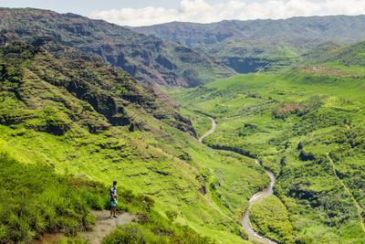 https://imgc.allpostersimages.com/img/posters/waimea-canyon-state-park-kauai-hawaii-united-states-of-america-pacific_u-L-PWFKOV0.jpg?artPerspective=n
