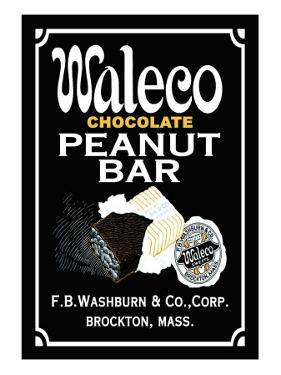 Waleco Chocolate Peanut Bar