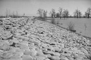 Bessie Levee on the Mississippi River augmented with sand bags during the flood by Tiptonville, TN by Walker Evans