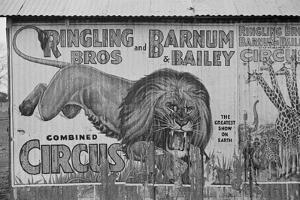 Circus poster covering a building in Alabama, 1936 by Walker Evans