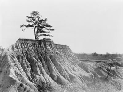 Erosion near Jackson, Mississippi, 1936 by Walker Evans