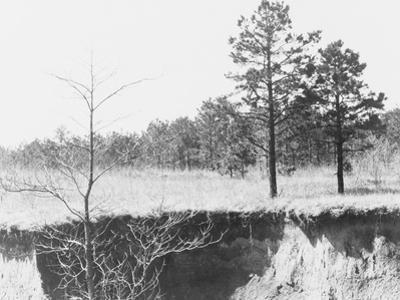 Erosion near Oxford, Mississippi, 1936 by Walker Evans