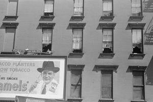 House Fronts on 61st Street, between 1st and 3rd Avenues, New York City, 1938 by Walker Evans