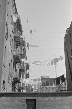 Laundry near the intersection of 1st Avenue and 61st Street, New York City, 1938 by Walker Evans