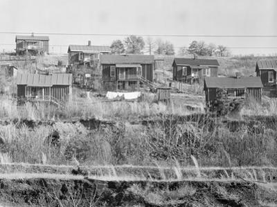 Miners' houses near Birmingham, Alabama, 1935 by Walker Evans