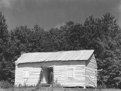 person cabin in Hale County, Alabama, c.1936 by Walker Evans