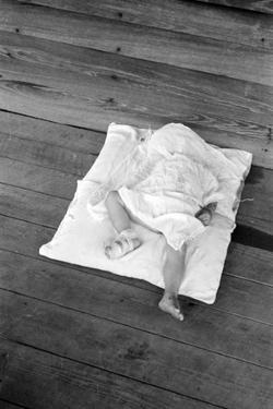 Squeakie asleep in Hale County, Alabama, 1936 by Walker Evans
