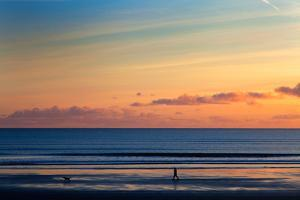 Walking the Dog, Tramore, County Waterford, Ireland