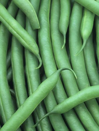 A Harvest of Blue Lake Green Beans (Phaseolus Vulgaris) by Wally Eberhart
