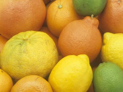 Citrus Fruits. Grapefruit, Tangerine, Ugli, Orange, Lemon, Lime, Tangelo and Clementine by Wally Eberhart