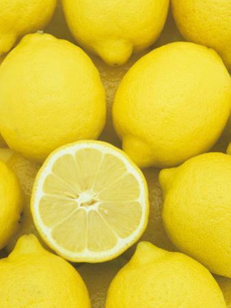 Lemons (Citrus Limon), Eureka Variety by Wally Eberhart