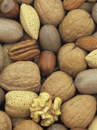 Mixed Nuts: Almond, Hazel, Pecan, and Walnut by Wally Eberhart