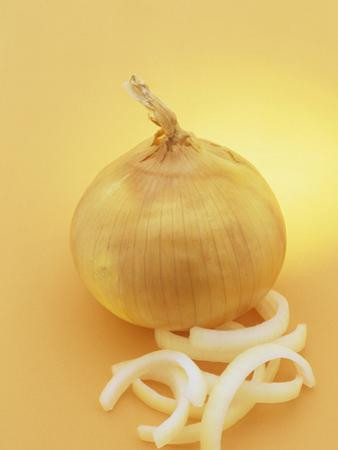 Onion and Onion Slices (Allium Cepa) by Wally Eberhart
