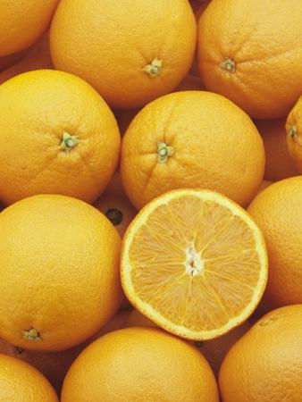 Sweet, Juicy Oranges (Citrus Sinensis) by Wally Eberhart