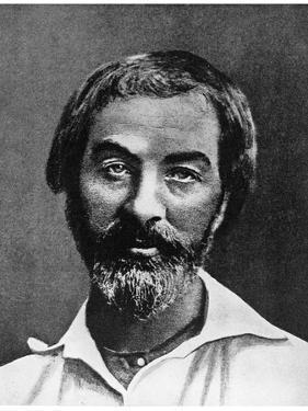 Walt Whitman, American Poet, 19th Century