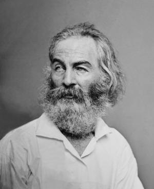 Walt Whitman American Poet, Author, and Journalist in Portrait from Mathew Brady Studio, 1863