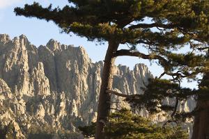 Aiguilles De Bavella Peaks, La Alta Rocca, Corsica, France by Walter Bibikow