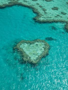 Australia, Queensland, Whitsunday Coast, Great Barrier Reef, Heart Reef, Aerial View by Walter Bibikow