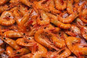 Australia, Sydney Fish Market, Shrimp by Walter Bibikow