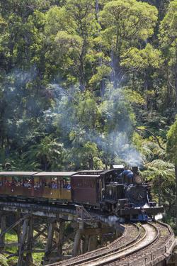 Australia, Victoria, Belgrave, Puffing Billy Steam Train by Walter Bibikow