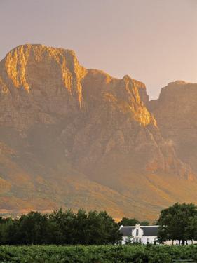 Boschendal Wine Estate, Franschoek, Cape Province, South Africa by Walter Bibikow