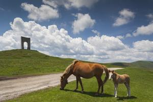 Bulgaria, Central Mts, Troyan, Troyan Pass, Battle Monument and Horses by Walter Bibikow