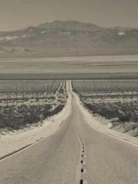 California, Mojave Desert, Amboy Road, USA by Walter Bibikow