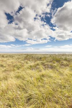 Canada, New Brunswick, Bay of Fundy, Alma. Gateway to Fundy National Park, town beach. by Walter Bibikow