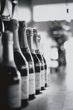 Champagne Bottles in a Row by Walter Bibikow