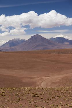 Chile, Atacama Desert, Desert Landscape by the Paso Jama by Walter Bibikow