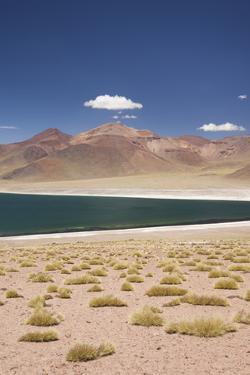 Chile, Atacama Desert, Laguna Miscanti, Desert Lake View by Walter Bibikow