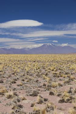 Chile, Atacama Desert, Laguna Miscanti, Desert Landscape by Walter Bibikow
