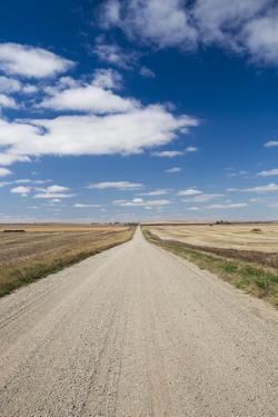 Country Road, Strasburg, North Dakota, USA by Walter Bibikow