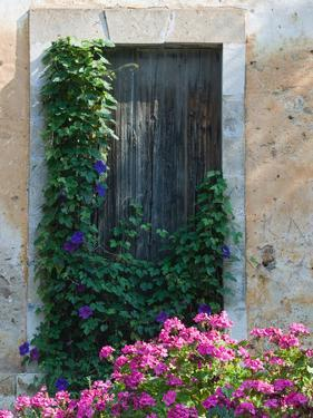 Detail of Old House, Assos, Kefalonia, Ionian Islands, Greece by Walter Bibikow